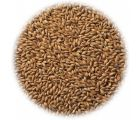Солод копченый ячменный Cookie Malt EBC 40-70 (Viking Malt)